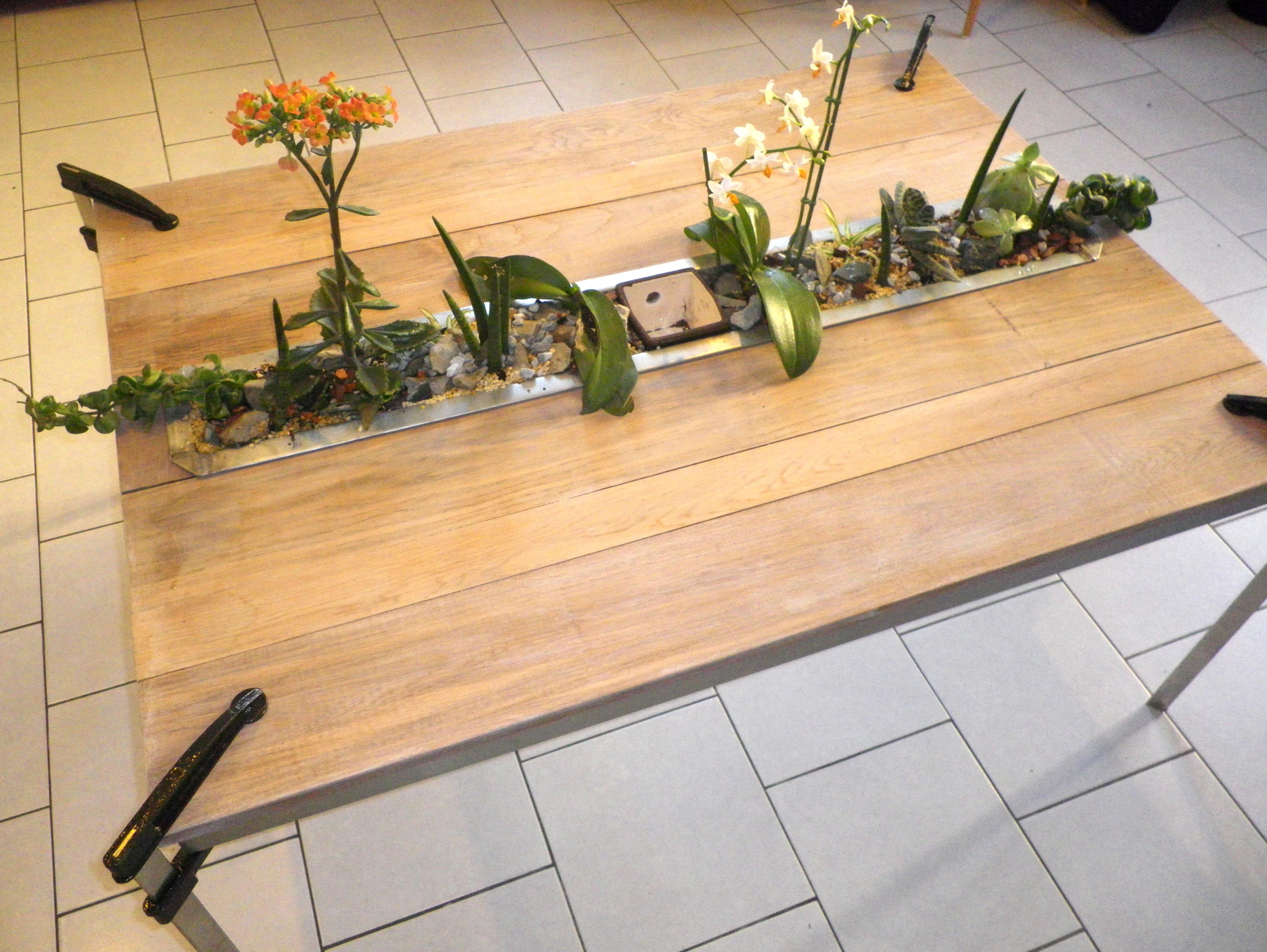 Nouvelles cr ations d couvrez nos tables aquav g tales for Entretien jardin sarthe