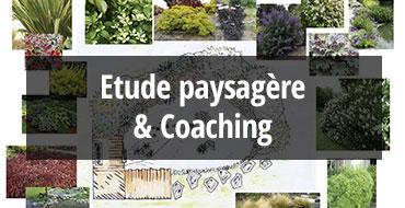 etude_paysagère_coaching